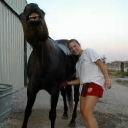 The Vitassage and Horses= Happy Horse and Owner