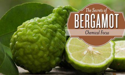 Bergamot! Bergamot!  Oh how I Love You!!