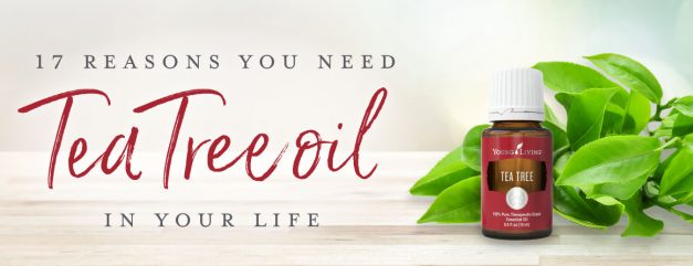 Everybody needs Tea Tree in there home! From the YL Blog