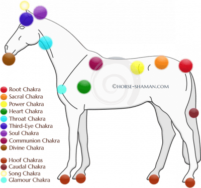 You'll want to catch this last article on Horse Chakras now!
